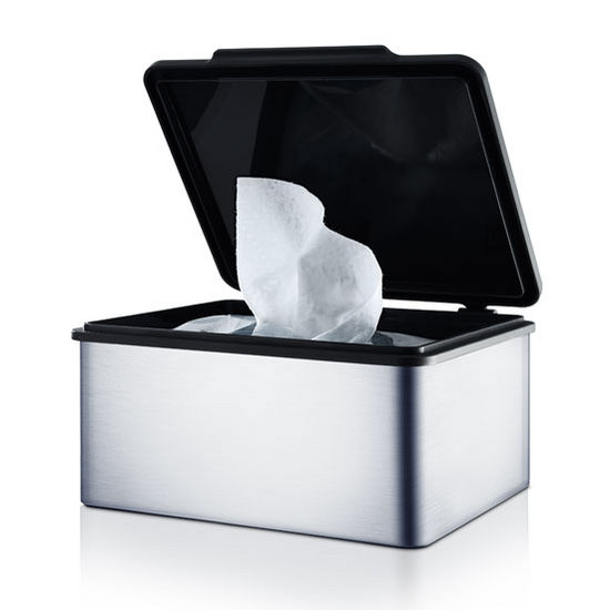cd11d9fd7c5 Menoto Collection Tissue Storage Box in Satin Stainless Steel or Polished Stainless  Steel by Blomus