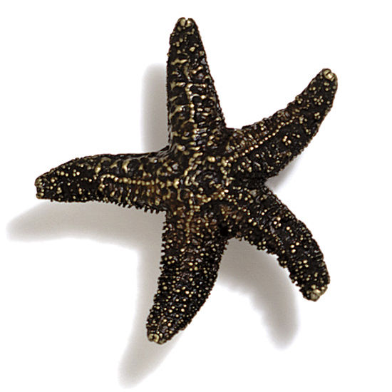 Modern Objects Scallops & Seahorses Collection 2-1/4'' W Mini Starfish Knob in Antique Brass, 2-1/4'' W x 3/4'' D x 3/4'' H