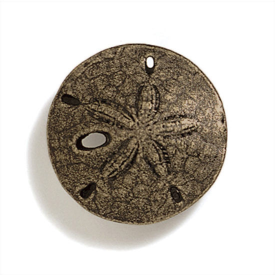 Modern Objects Scallops & Seahorses Collection 1-1/2'' Diameter Round Mini Sand Dollar Knob in Antique Brass, 1-1/2'' Diameter x 3/4'' D x 3/4'' H