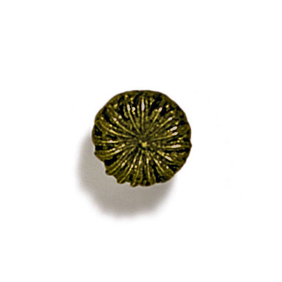 Modern Objects Pinecones & Jasmine Collection 7/8'' Diameter Round Poppy Knob in Antique Brass, 7/8'' Diameter x 3/4'' D x 3/4'' H