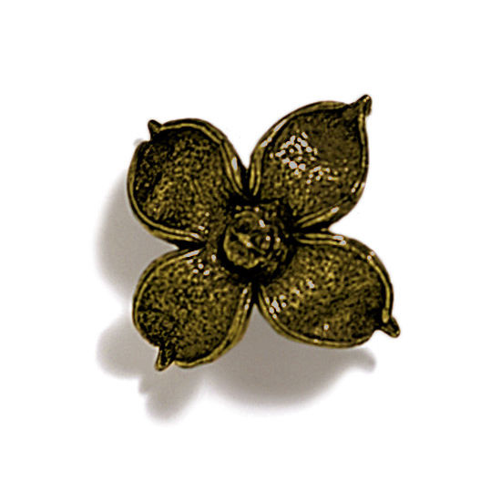 Modern Objects Pinecones & Jasmine Collection 2'' W Flower Knob in Antique Brass, 2'' W x 1-1/8'' D x 1-1/8'' H