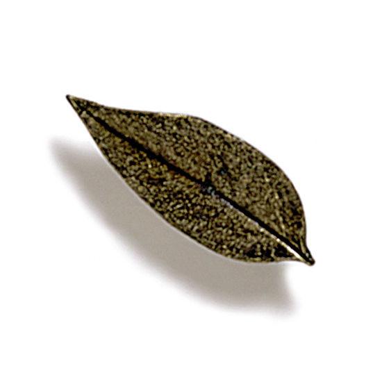 Modern Objects Pinecones & Jasmine Collection 2-1/4'' W Jasmine Knob in Antique Brass, 2-1/4'' W x 3/4'' D x 3/4'' H
