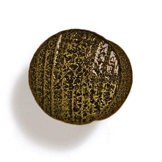 Modern Objects Bark, Leaves & Rocks Collection 1'' Diameter Round Small Shaker Knob in Antique Brass, 1'' Diameter x 7/8'' D x 7/8'' H