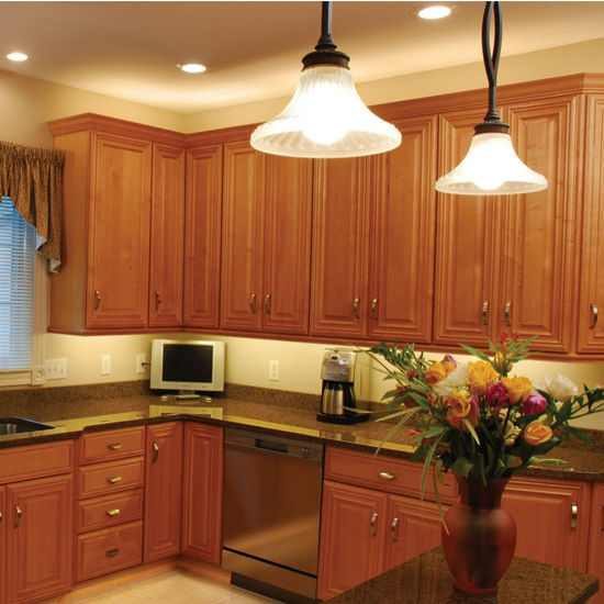 Cabinet lighting tresco by rev a shelf elli 2 12v high for Over counter light fixtures