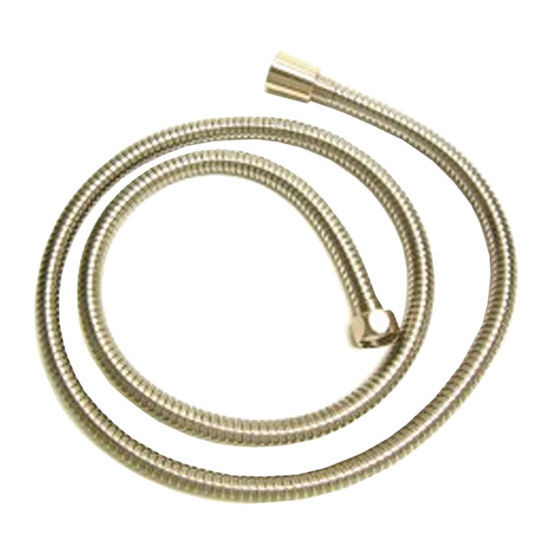 Whitehaus Showerhaus Shower Hose, Polished Brass